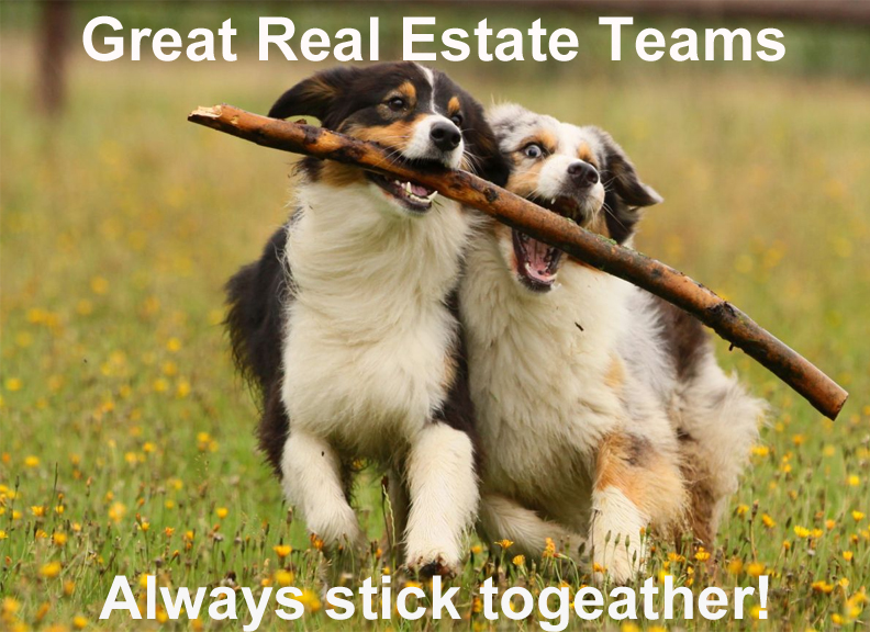 A Great Real Estate Team