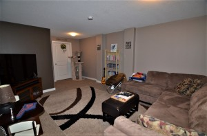 Basement- family room