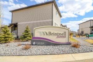 Brintnell