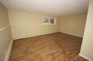 Fourplex Unit 4 Livingroom